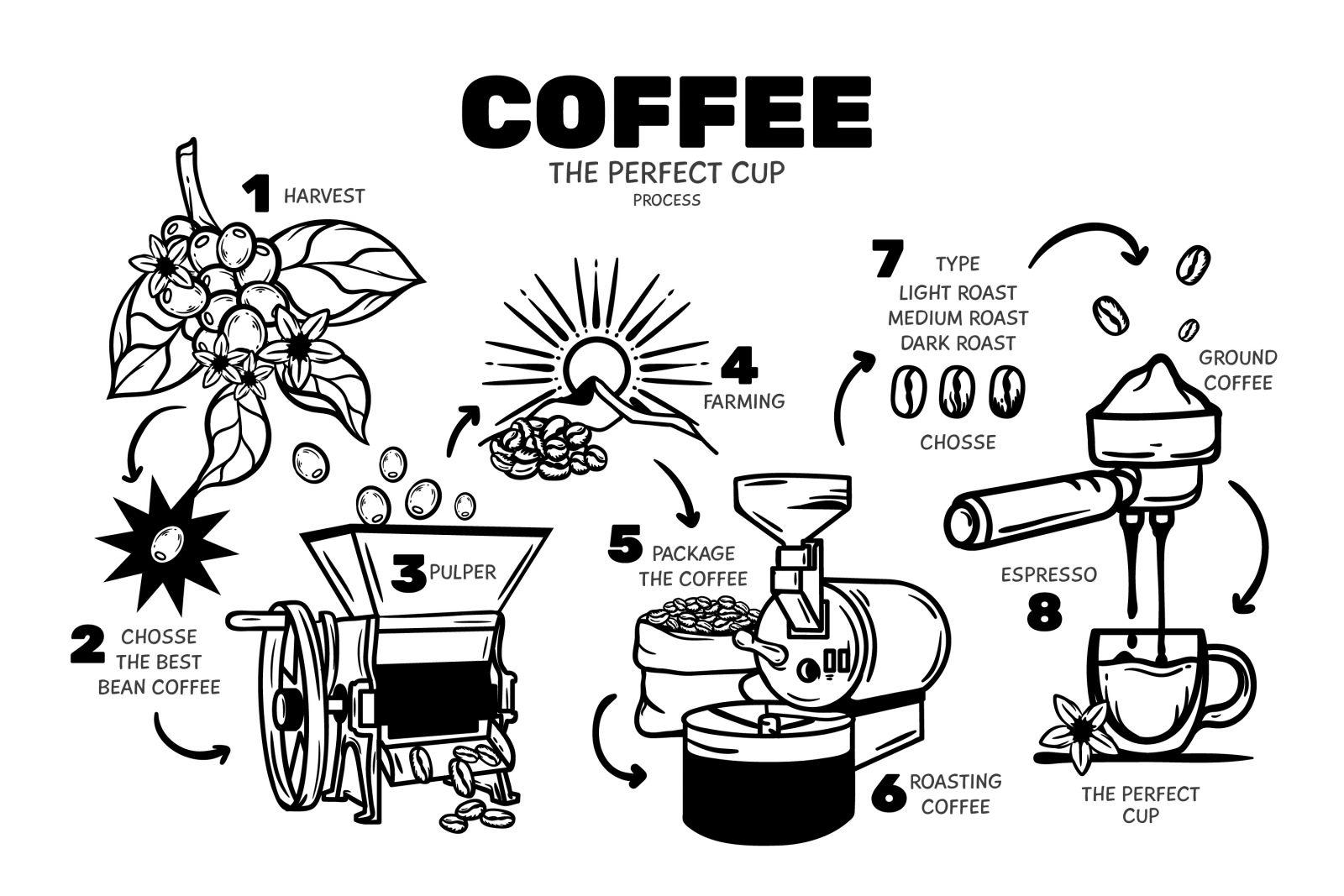 Vector quy trình sản xuất cà phê