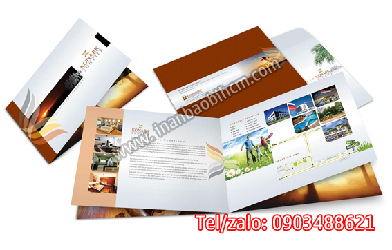 in catalogue giá rẻ tphcma